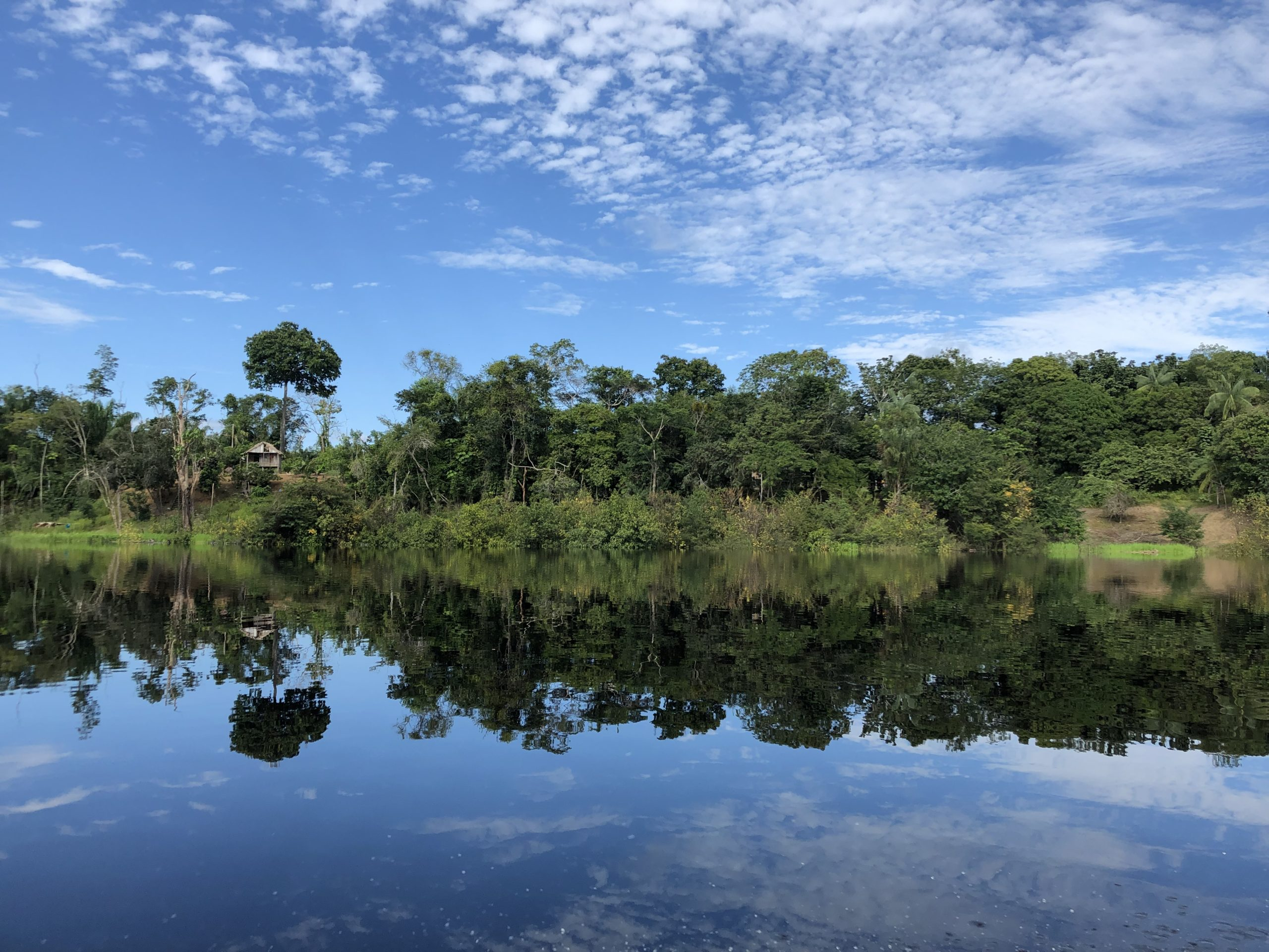 The Human Niche in the Tropics